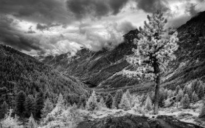 Workshop di fotografia in infrarosso – 19 e 20 settembre 2020
