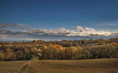 Workshop di paesaggio e foliage – 1 Novembre 2020