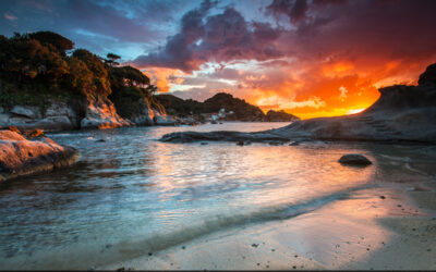 Isola d'Elba – Tour fotografico – 4-6 Giugno 2021